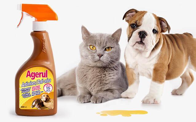 Antiorines perros y gatos Agerul